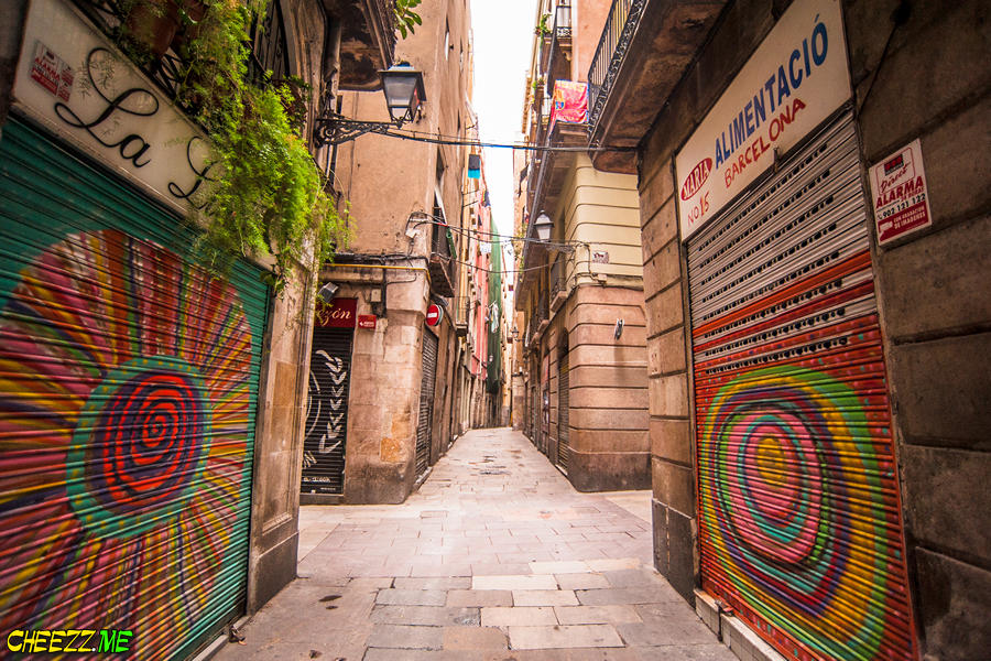 graffiti-in-Barcelona-one-day-tour-with-personal-guide-photographer